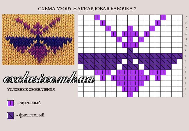 схема узора жаккардовая бабочка2
