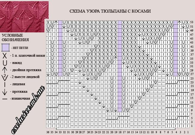 sxema-uzora-tyulpany-s-kosami