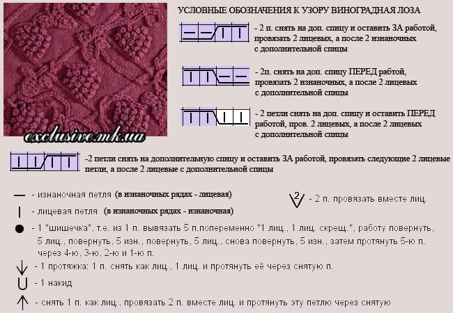 uslovnye-oboznacheniya-vinogradnaya-loza